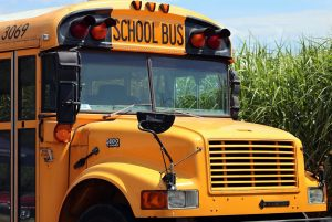 10 Tips for Starting the Divorce Process and Sending Your Children Back to School